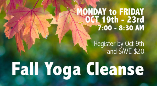 Fall-Yoga-Cleanse-2015-Banner