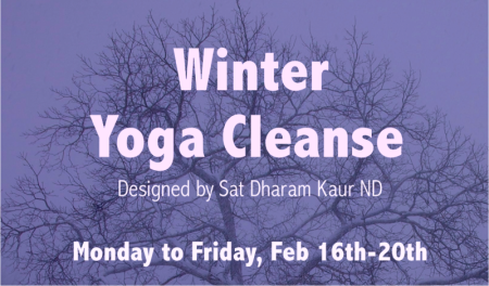 Winter Cleanse Tree