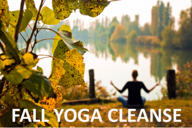 fall-yoga-clease